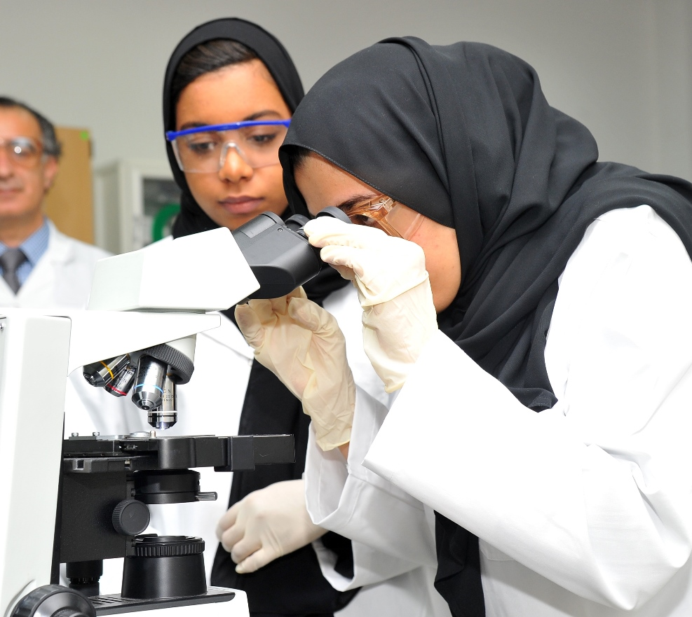 Students doing research at the lab